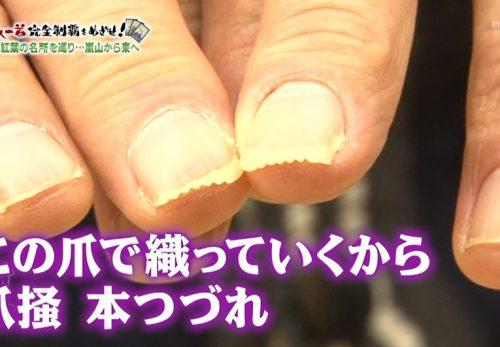 11月24日放送『ちちんぷいぷい』石川つづれ紹介